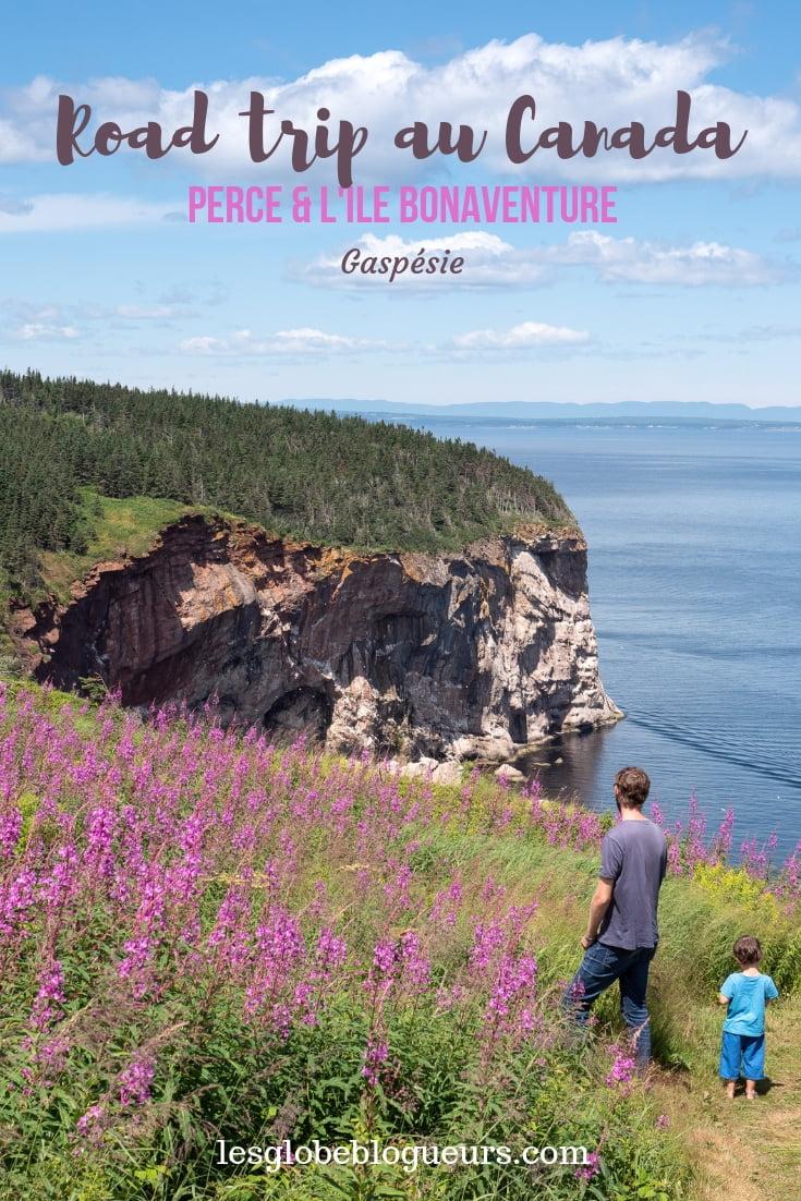 Guide pratique visiter rocher percé et île Bonaventure