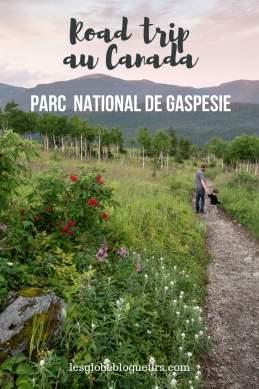 guide pratique pour organiser son séjour au parc national de Gaspésie