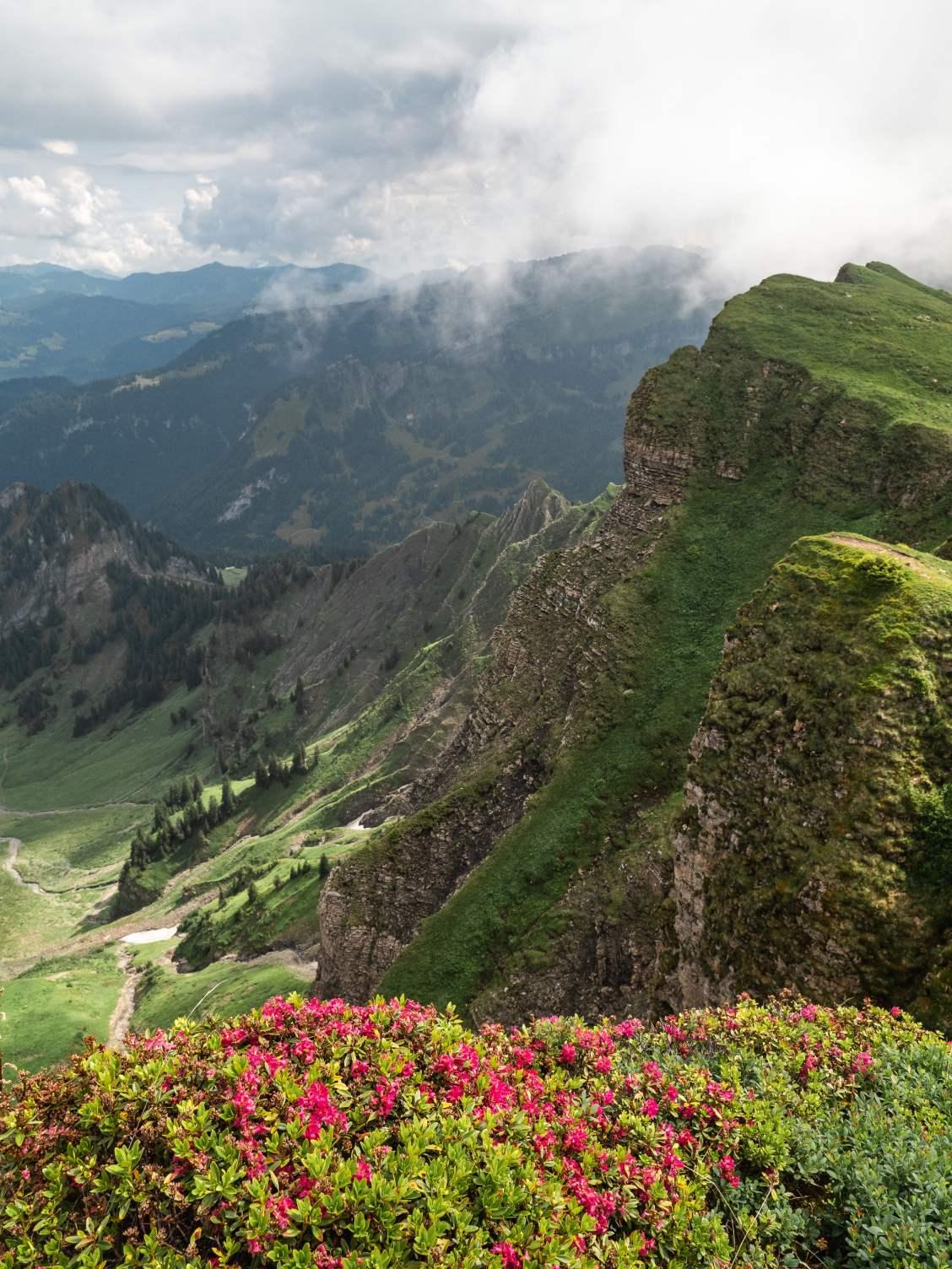 bregenzerwald montagne