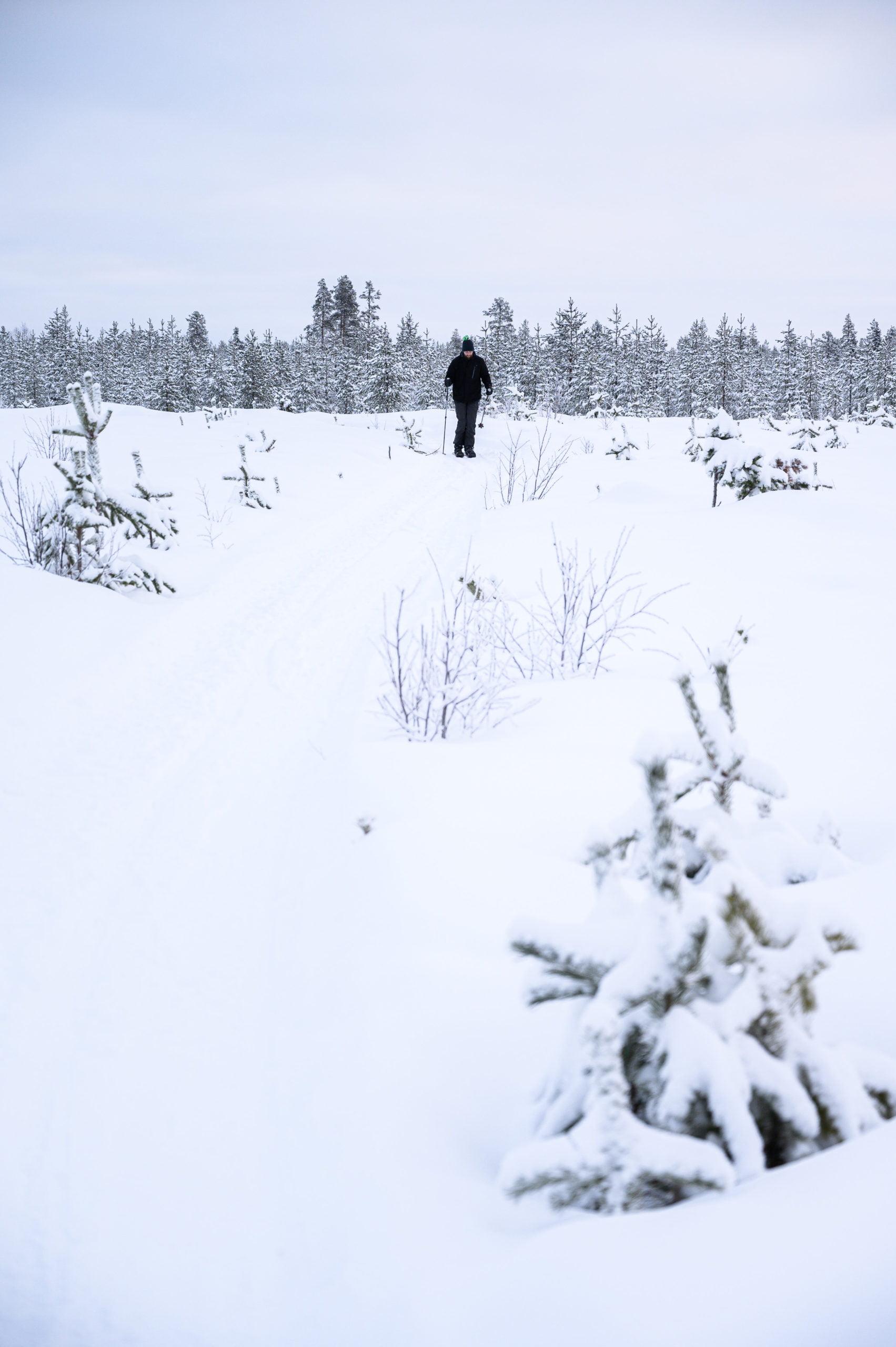 Ski altaï Laponie