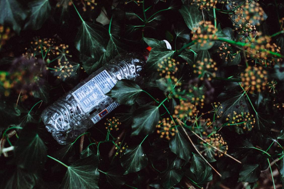 lisa fotios photo of water bottle on grass field 3264752 7