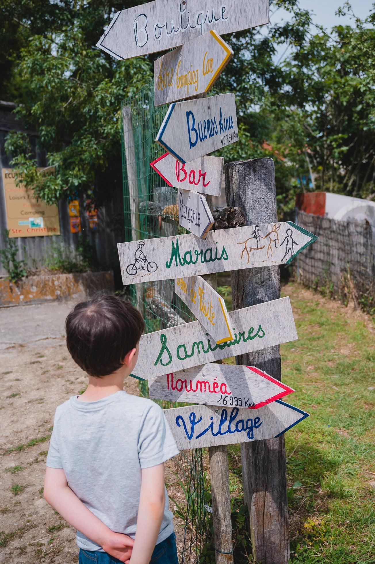 marais poitevin 8347 - Les globe blogueurs - blog voyage nature