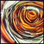 La tarte spirale Carottes / Courgettes