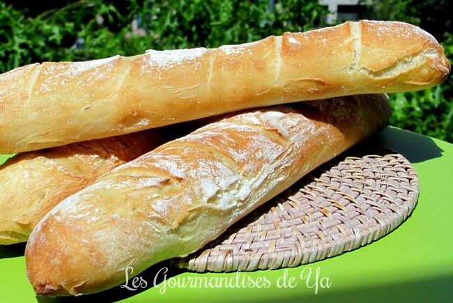 Baguette tradition LGY