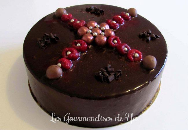 Entremets chocolat - framboise