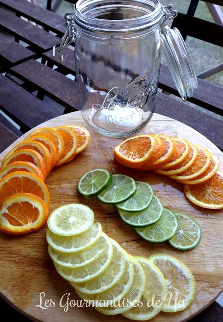 Eau de fruits detox : orange, citron jaune et citron vert LGY 02