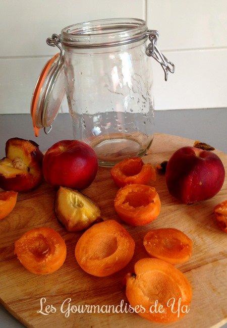 Eau de fruits : pêche-abricot LGY 02