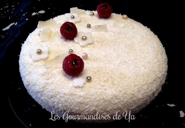 Entremets coco-framboise LGY 01