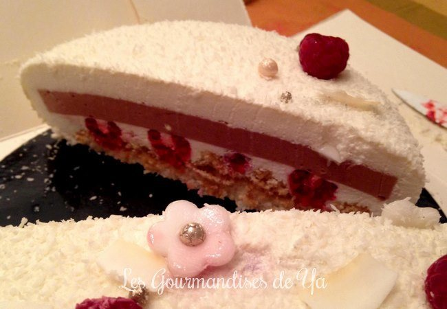 Entremets coco-framboise LGY 02