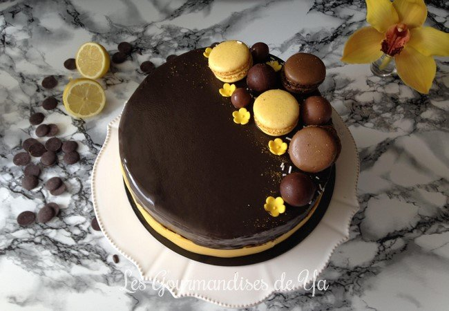 Entremets praliné, citron et chocolat LGY 01