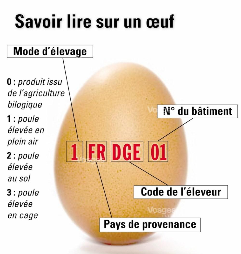 Savoir lire sur un oeuf (source Vosges matin)