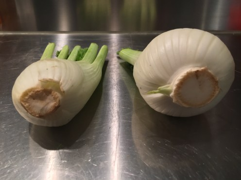 Fenouil femelle et fenouil mâle