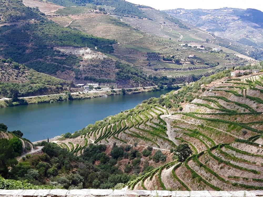 Les vignobles de la Vallée du Douro.