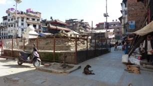 Le Kasthamandap, bâtiment réputé pour avoir été construit avec le bois d'un seul arbre, n'a pas résisté au séisme