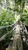De jolis petits ponts et passerelles permettent de contourner les obstacles