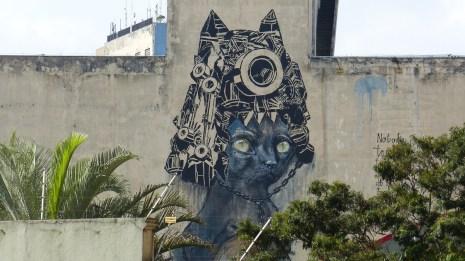 Le street-art est omniprésent dans le centre