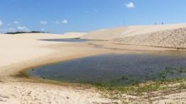Premières lagunes à Vassoura