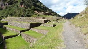 Terrasses sur le flanc Ouest en arrivant à l'entrée de Pisac