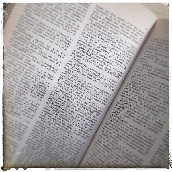 Dictionnaire-Dessin-renata-chien-2ll
