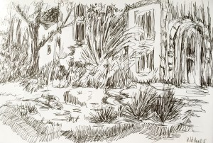 mexique-jardi-dessin-croquis