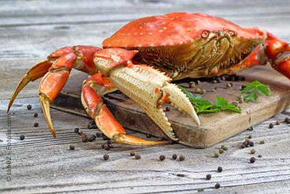apprendre-dessiner-crabe