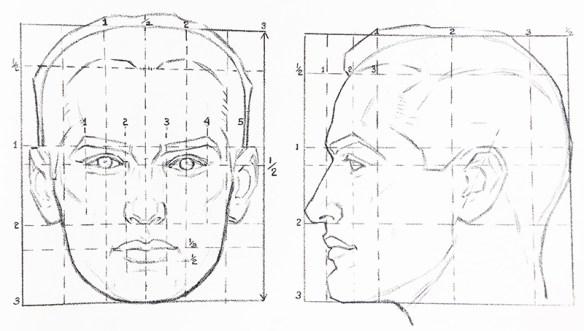 proportions-ideales-portrait