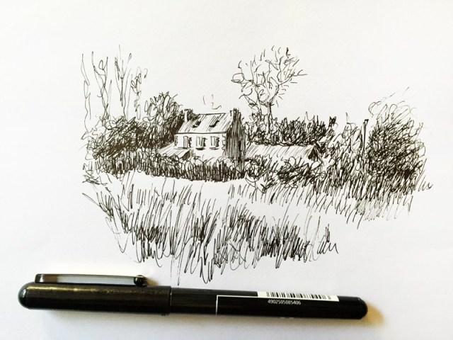 Petite maison bretonne dessiné dans son paysage - Roscoff - au stylo pilot 0.5 noir. Dessin au lignes avec des hachures.