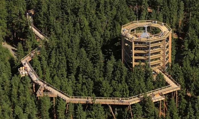 lesena gradnja stolp na rogli