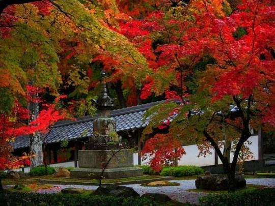 temple Eigen-ji à l'automne.