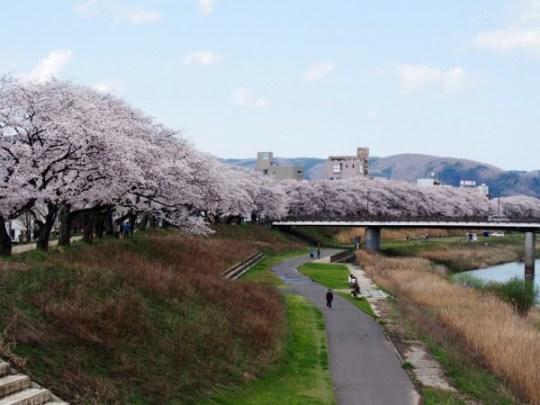 Rivière Asuwa, Fukui.