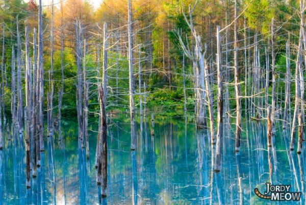 Aoike Blue Pond