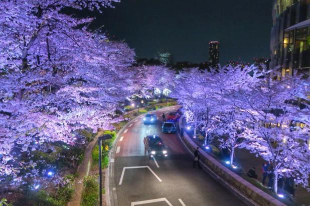 Tokyo Midtown Nuit par Oliviero Morelli