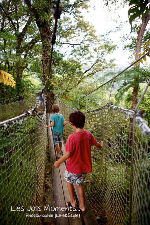 Jardin de Balata Mars 2013 ponts suspendus