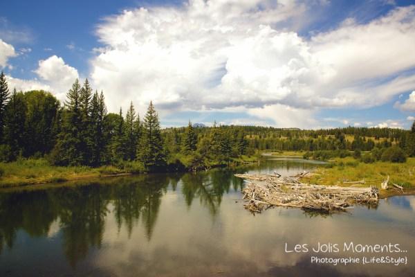 Grand Teton National Park 4
