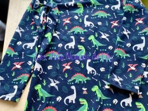 tee-shirt manches longues, garçon, vêtements garçon, original, création, dinosaures