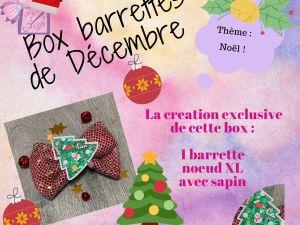 box barrettes accessoire sd echeveux idée cadeau anniversaire noël petite fille