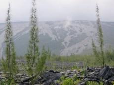 coulée de 2007