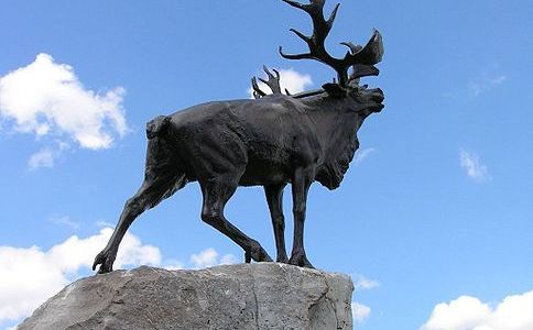 Beaumont Hamel – In his own words…
