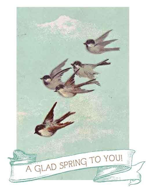 springblueskybirds-copy