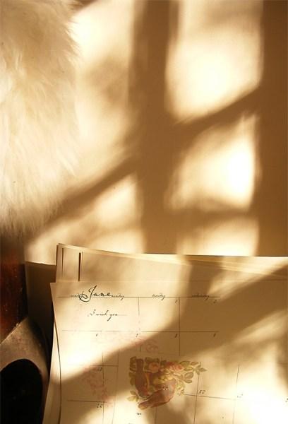 sunlightcalendar.jpg