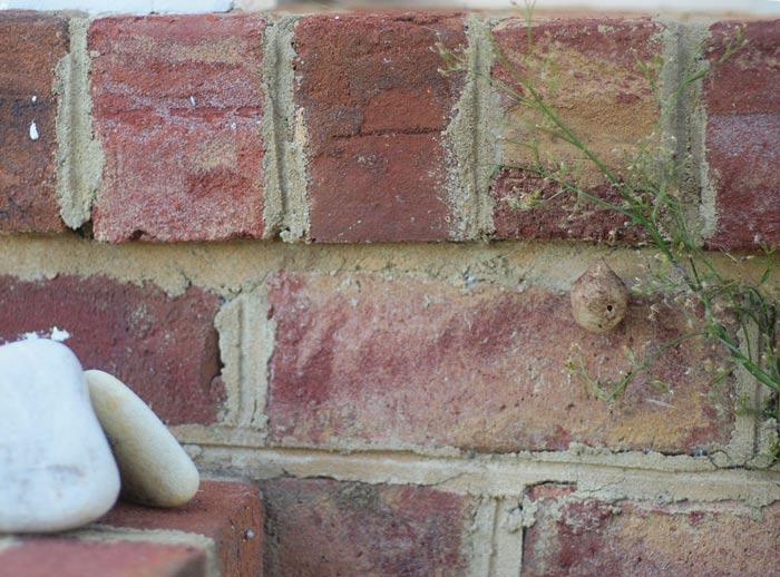 brickstonenest