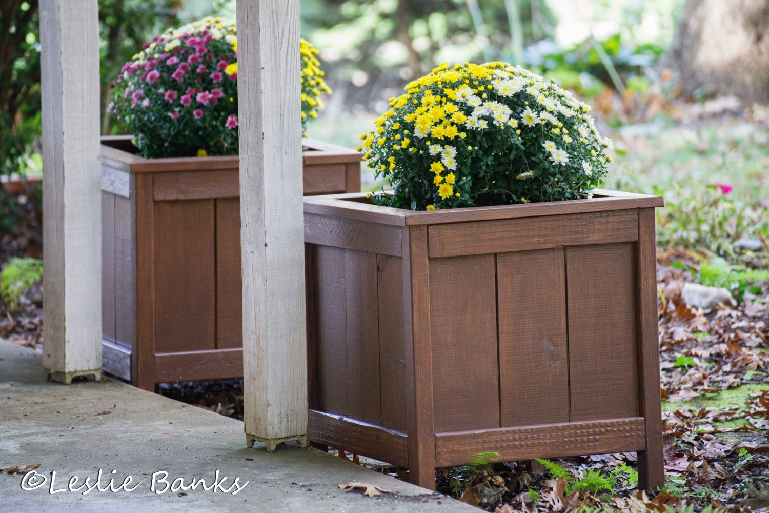 Planter Boxes Completed