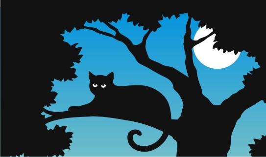 kitty logo - test - lrg