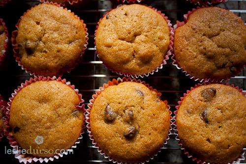 Chocolate Chip Pumpkin Muffins!