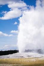 Yellowstone-1732