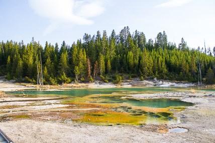 Yellowstone-2300
