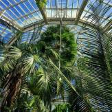 conservatory 23