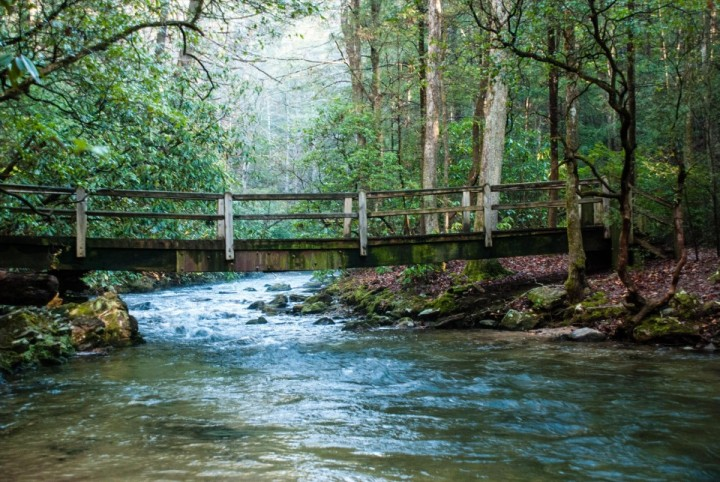 Smithgall Woods State Park in Helen