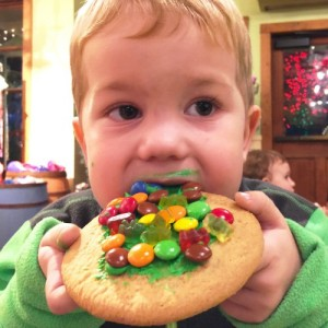 stone mountain christmas cookies