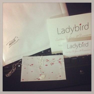 5 Un colis ladybird